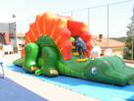 DRAGON SLIDE MT 8X4X3,50